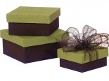 Rainforest and Chocolate Nesting Boxes (2 Pieces) image